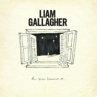 All Youre Dreaming Of  - Gallagher Liam [VINYL SINGLE]
